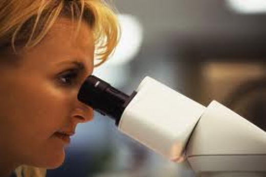Pathologist reading frozen section slide prior to calling the surgeon with malignancy and margin status of the specimen.