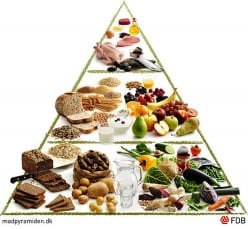 Is The Paleo Diet Healthy Or Controversial?