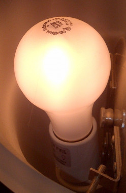 Incandescent Light Bulb Ban!