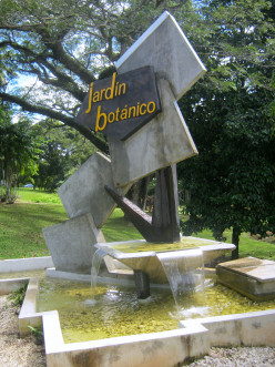 The Botanical Garden of The University of Puerto Rico