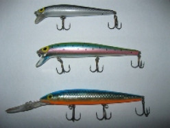 The Best Lures for Canadian Fishing