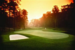 Top 8 Buying Tips for Beginning Golfers