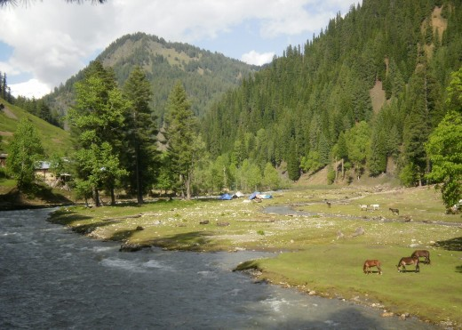Surrounding areas of Taobat town, Neelum Valley.