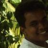PulasthihSenid profile image