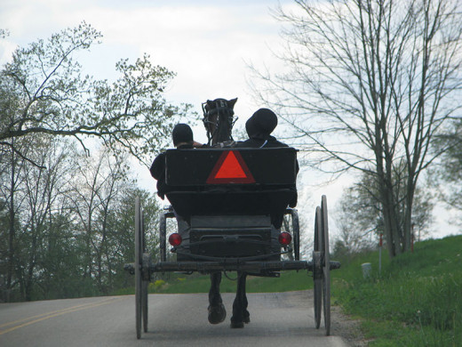 An Amish Mother and Daughter on their way home from the store.  The Amish women do most of the shopping.  Just wonder what the conversations are like on the ride home?  No cell phone or texting to get in the way.