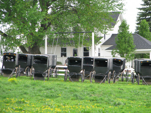 Amish do not have traditional churches, instead they rotate hosting church in each families homes. Talk about pressure of having the whole congregation over to your house for church and a meal.