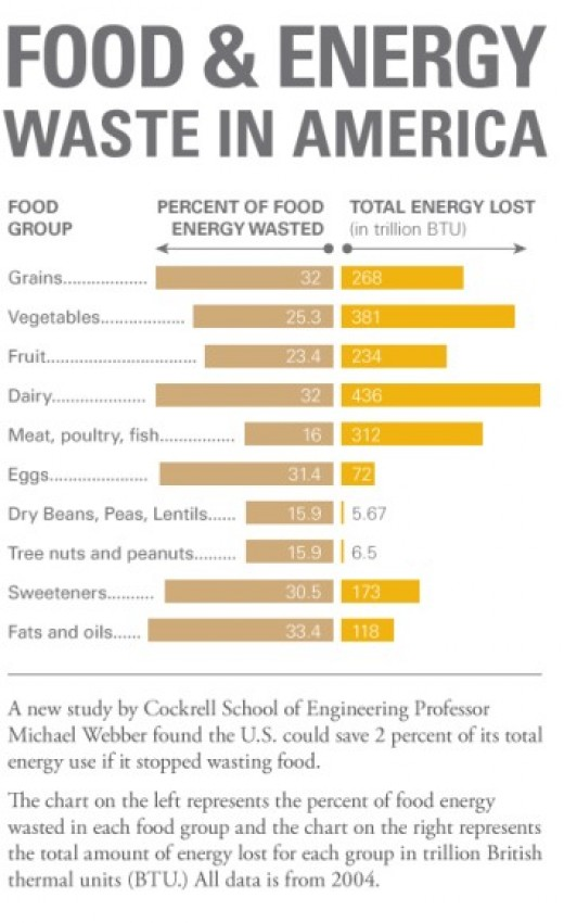 Food & Energy Waste