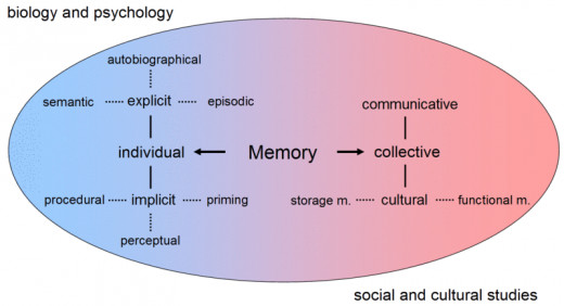 This chart shows the different types of memory.