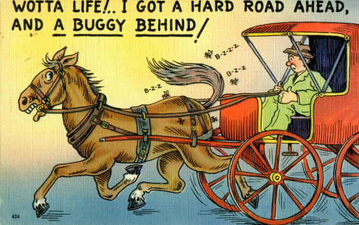 A good pun never goes out of style.  Get it? Buggy = carriage and buggy = flies.