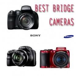 Three of my Best Bridge Cameras
