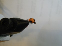 Fly Tying the Foam Ladybug