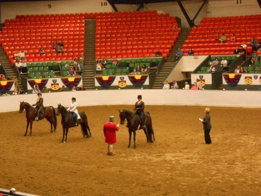 Judging during the horse show in the main arena.