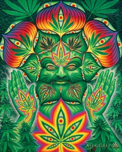 The 20 Greatest Songs About Marijuana Part 2