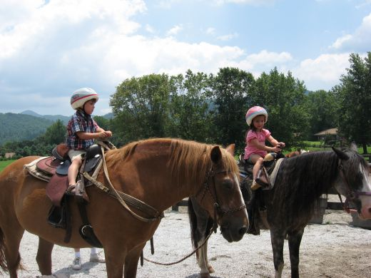 Ride horses through the Blue Ridge Mountains.