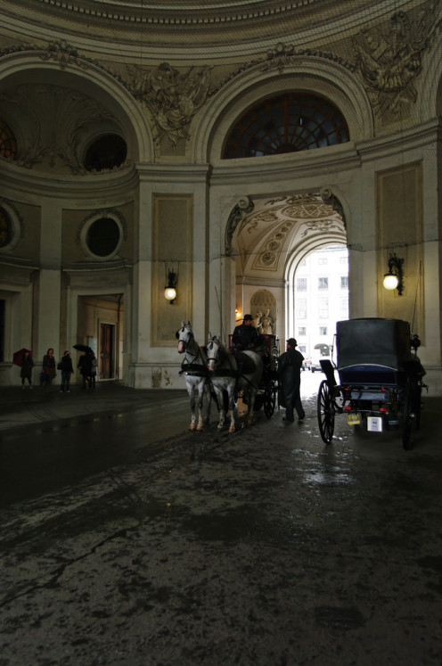 Horse and Carriage at the Hofburg Palace, Vienna - Austria