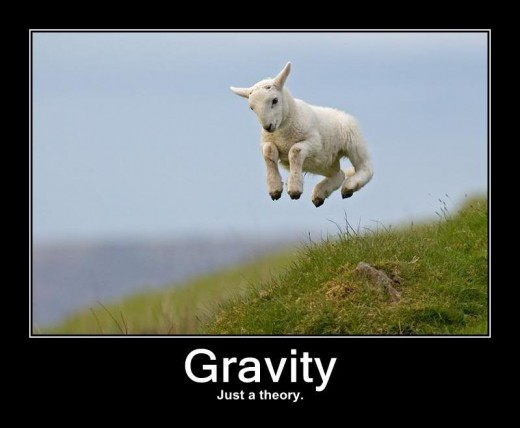 To living entities, Gravity is just an irrelevant Theory.