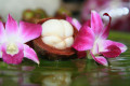 Mangosteen, How To Enjoy The Benefits Of The Queen Of Fruits