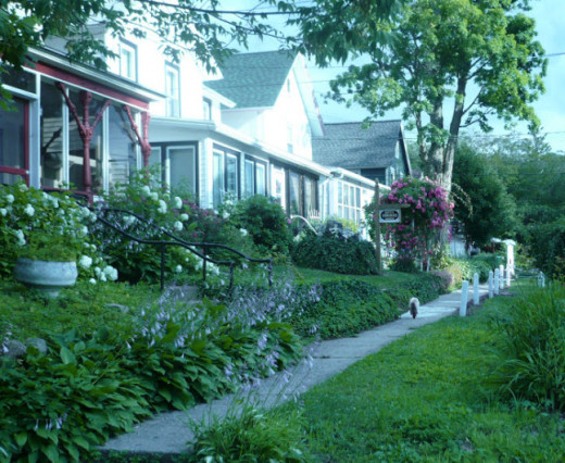These are some of the houses in Lilydale. The brown and white sign is for the medium Kitty Osborne. One of the neighborhood's many felines is seen trotting down the sidewalk, and later went exploring in Kitty's yard. Photo taken in 2009.