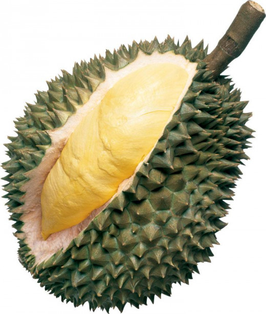 Durian fruit.