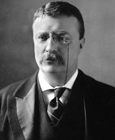 President Theodore Roosevelt, uncle to Eleanore and Franklin Roosevelt.