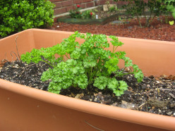 How the EarthBox Container Gardening System Works