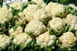 So much cauliflower!!