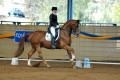 How to Choose a Horseback Riding Style