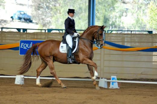 A dressage rider in formal attire.