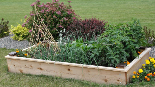 Building this raised bed cost some money, but it looks great and is simple to maintain.