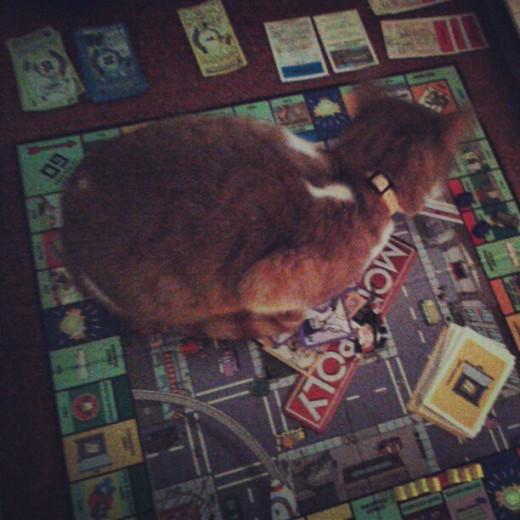 Kimiko Plays Monopoly