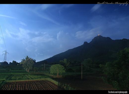 Thiruvannamalai Mahadeepam