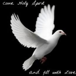 Holy Spirit lift us up.