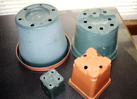 The right size container with the proper set of holes in the bottom so excess water can easily run off.