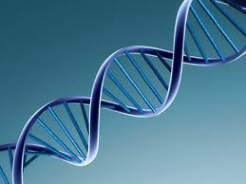 The discovery of DNA in the 1950s was a major scientific achievement. It's now far easier to solve certain crimes.