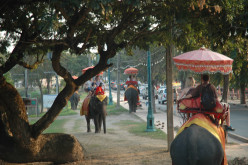 Elephants in the streets of Ayutthaya