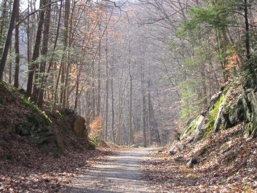 Columbia Trail - A Rail Trail Hike Located   Near High Bridge, New Jersey