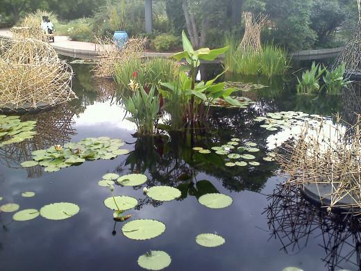Botanical Gardens in Colorado