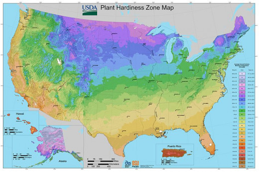 The new & improved USDA Hardiness Zone Map, now available online.