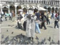 St Mark's Square dodging pigeons