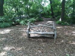 A bench in Central Park