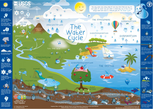 Detailed Water Cycle