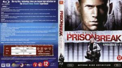 Prison Break had four seasons and a full length T.V. movie during their series run.  Michael and Lincoln work together to escape Fox River Prison.