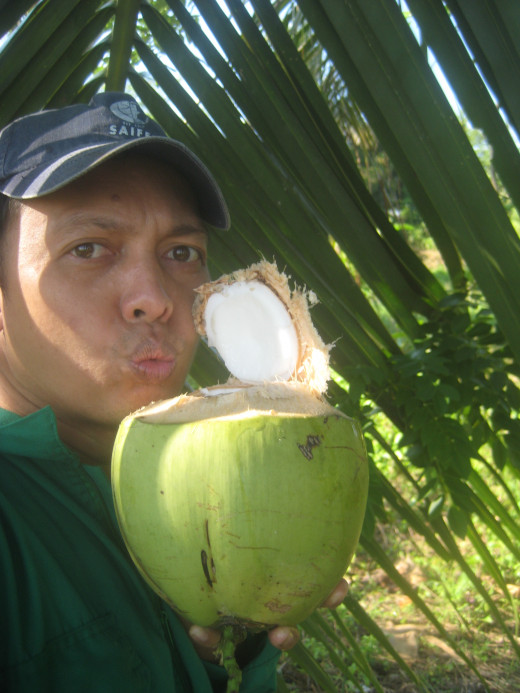 Enjoying the coconut water and its meat (Photo Source: Ireno Alcala aka travel_man1971)