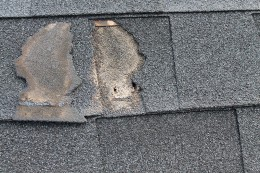 Broken off shingle with exposed nail hole allowing water infiltration