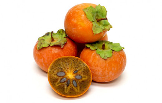 Buy Persimmon Tree