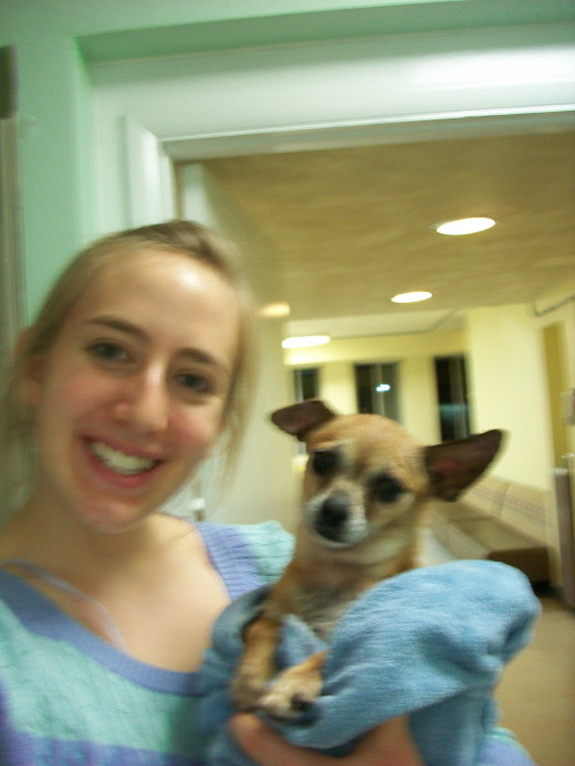 Gertie the Chihuahua and I pose following Gertie's bath makeover