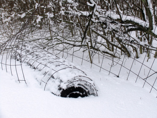 Cool Fence Buried in Snow Photo