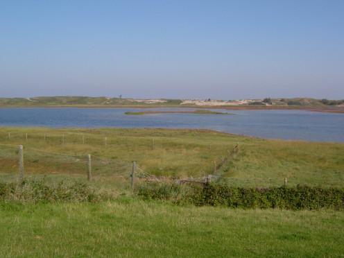 Het Zwin reserve