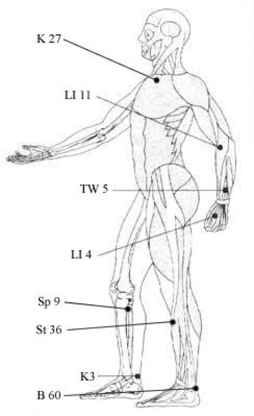 Dr. Michael Reed Gach, Ph.D indicates where the pressure points are located in the human body.