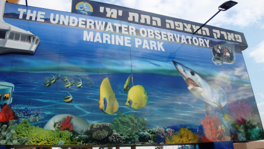 The Underwater Observatory - Just Down The Road From The Hotel